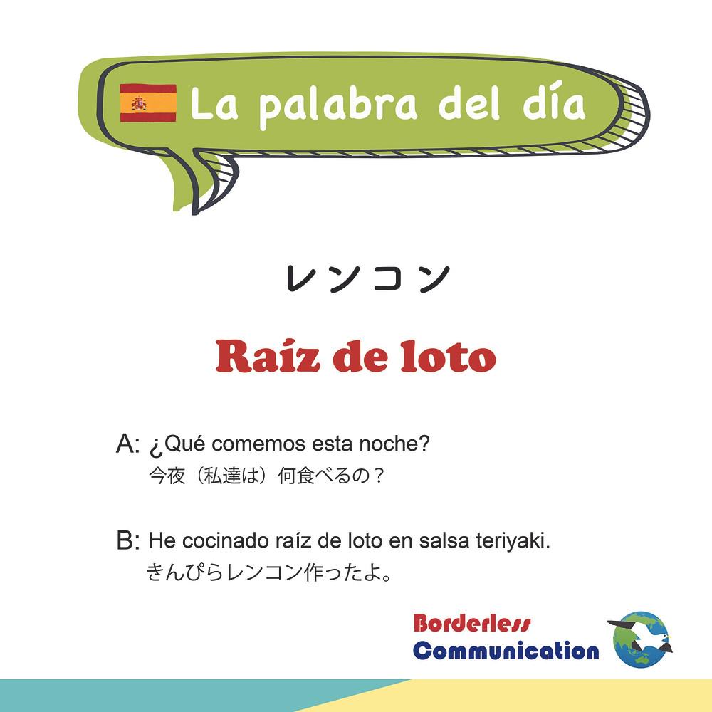 れんこん raíz de loto スペイン語
