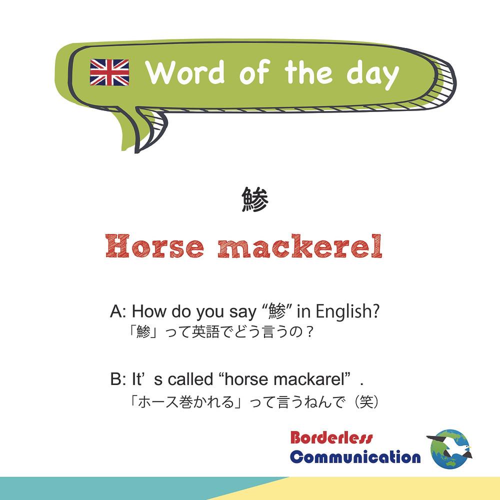 horse mackerel 鯵 英語