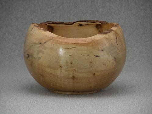 Bark-rimmed Maple Pot