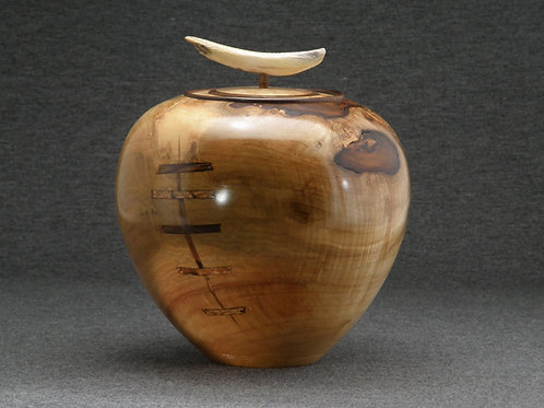 Tusk Pot (Maple Burl)