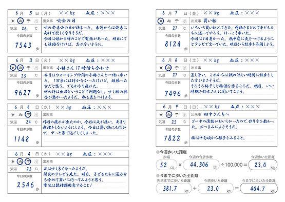 万歩計_見本.jpg