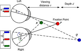 binocular vision fixation convergence diagram