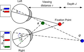 binocular vision fixation convergence diagram