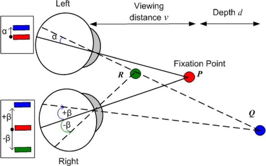 Binocular vision stereopsis diagram