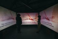 3 Sided projection space with work by Shaena Brandel  & Al Orange on screen