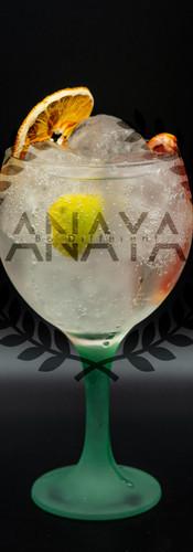 gin tonic-min.jpg