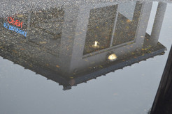 Neon Sign Puddle.jpg