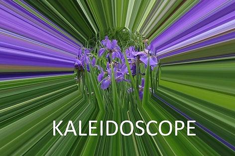 KaleidoscopeHeader4.jpg