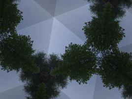 Triangle Tree Sky