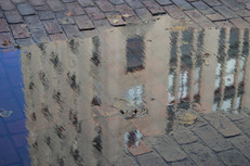 March Puddle Reflection