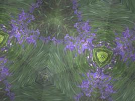 Many Iris