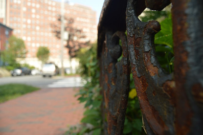 Fence Rust MMC