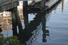 Harbor Shadows