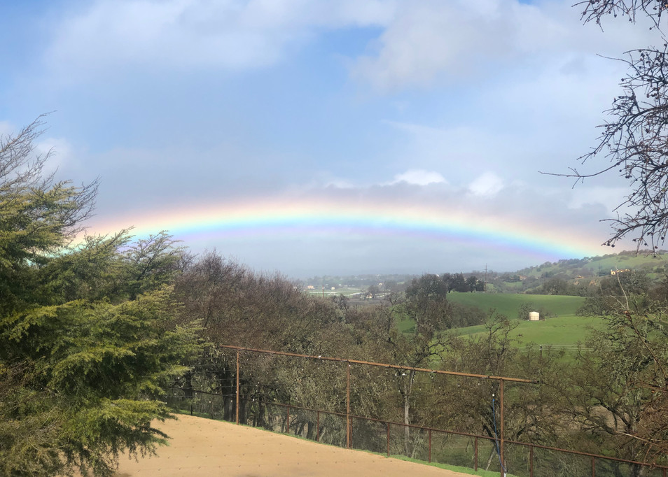 Rainbow as Viewed from Event Site