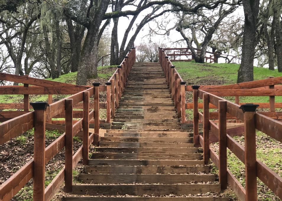 Stairs to Outdoor Event Site