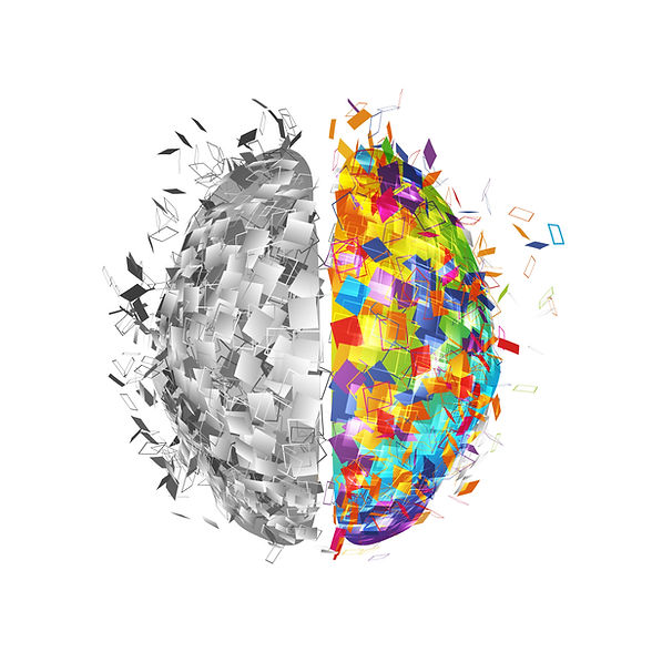 two halves of a brain.jpg