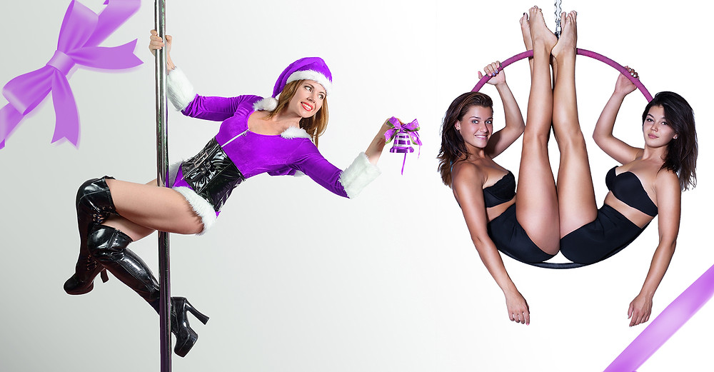 Pole Dancer & Aerialist Holiday Gift Guide 2018