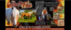 banner fb.jpg