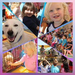 A visit from our friends at RAK Animal Welfare 2019