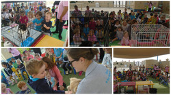 RAK Animal Welfare visit 2016