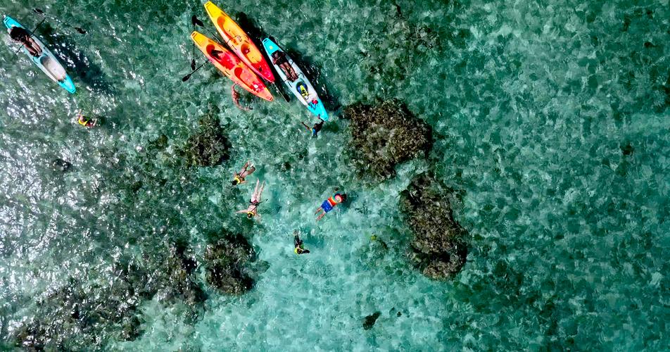 coralheads