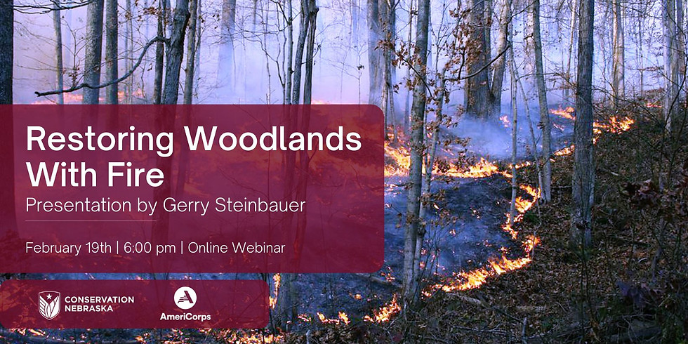 Restoring Woodlands with Fire