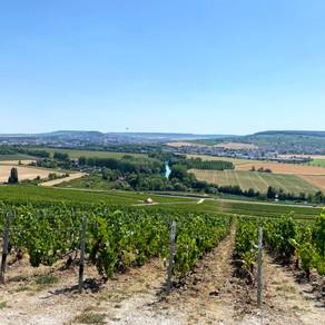 Champagne proeven in de Franse Champagne streek