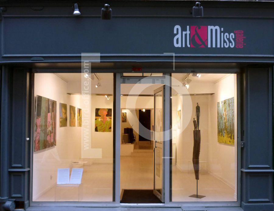 vitrine galerie art et miss