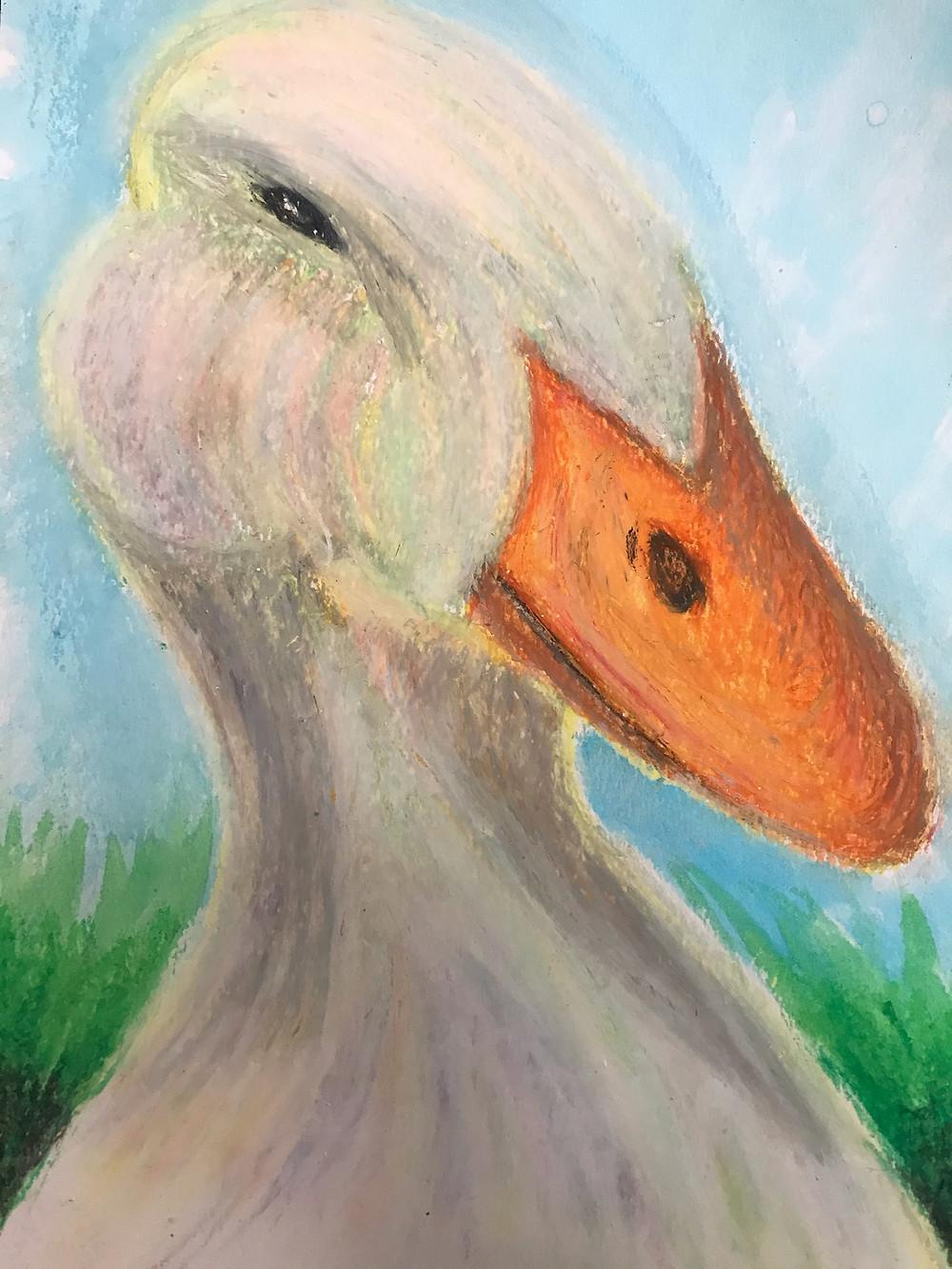 Duck in oil pastels by Danielle Menard DM Production