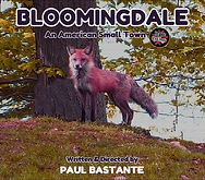 Bloomingdale An American Small Town DVD