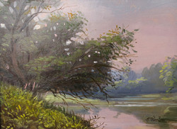 Lamoille River