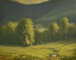 Trapp Pasture