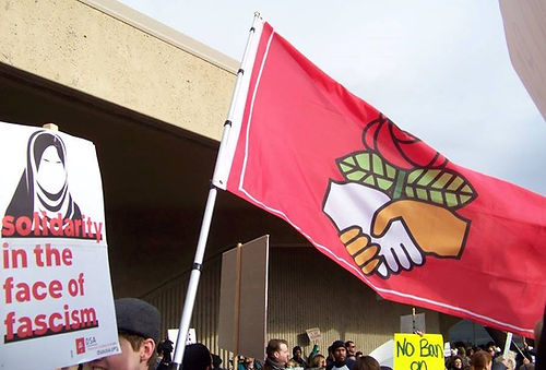 A Democratic Socialist flag held by a protester