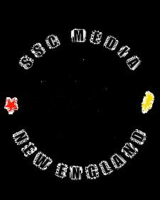 starstruk logofacedesign.PNG