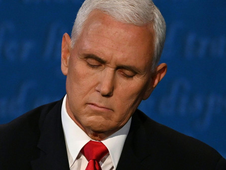 Pence's Fly: Why did buzz-worthy debate crashers fly more than debaters did?