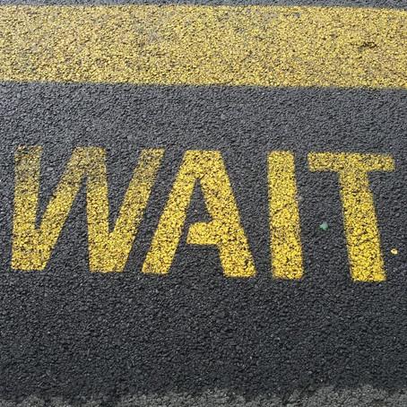 Patience: Embrace the Wait