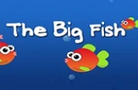 Big Fish.webp