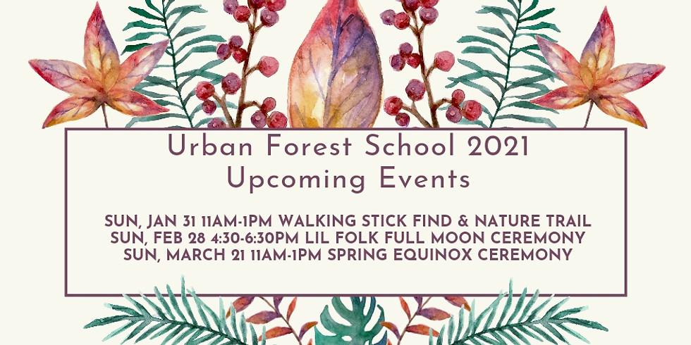 BttLC Urban Forest School February 2021