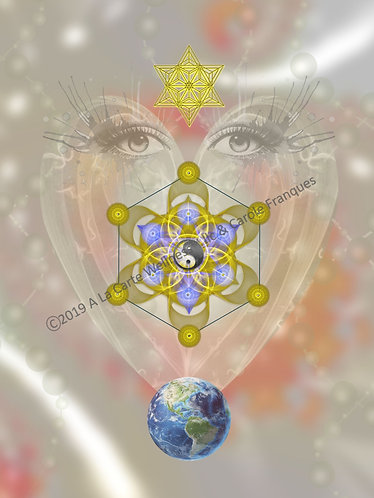 Expanded Perception, Connection & Harmony