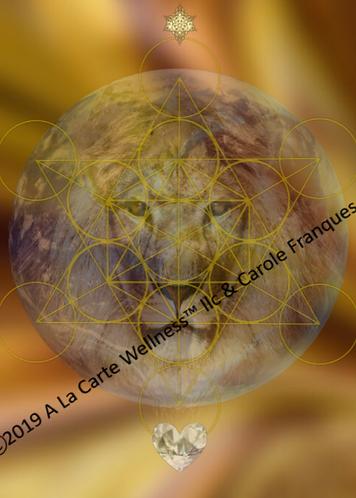 LIONS GATE ACTIVATION