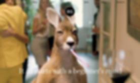 Screen Shot 2020-06-16 at 3.03.49 PM.png