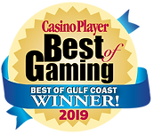 Casino Player- Best of Gaming.png