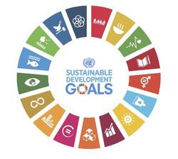 Programa de Metas SDGs