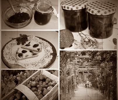 Marmeláda ve vzpomínkách