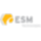 ESM Technologies Logo
