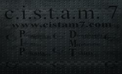 cistam 7 business card back