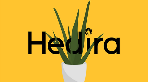 hedira for portfolio web_1.png