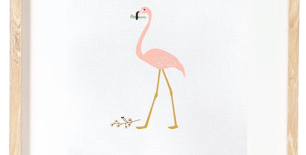 Flamingo - standing