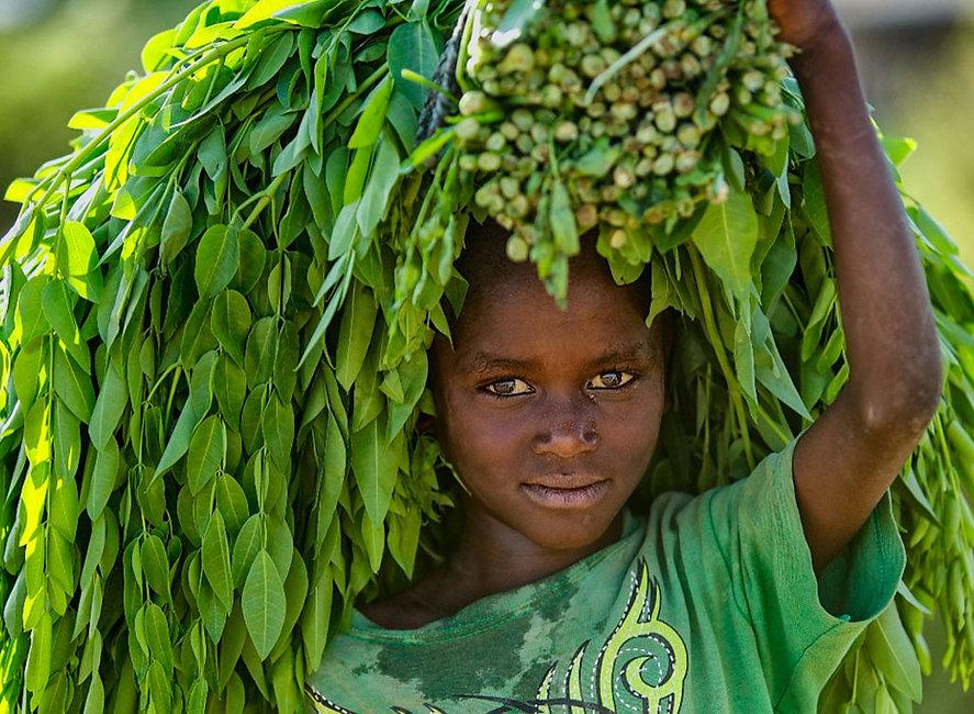 1 greenboy-MICHELE-ZOUSMER-ETHIOPIA-OMOR