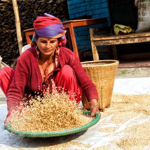 Zousmer Nepal 16